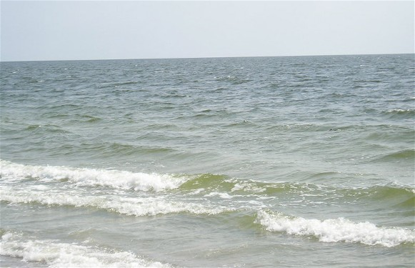 Image -- The Black Sea near the Kinburn Spit.
