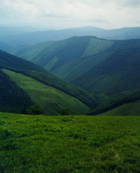 Image - Southern part of the Borzhava mountain group in the Polonynian Beskyd.