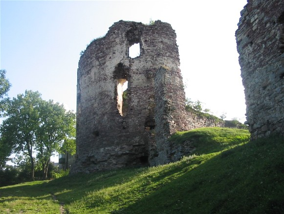 Image - Ruins of the Potocki castle in Buchach.