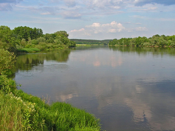 Image - The Buh River near Dorohychyn.