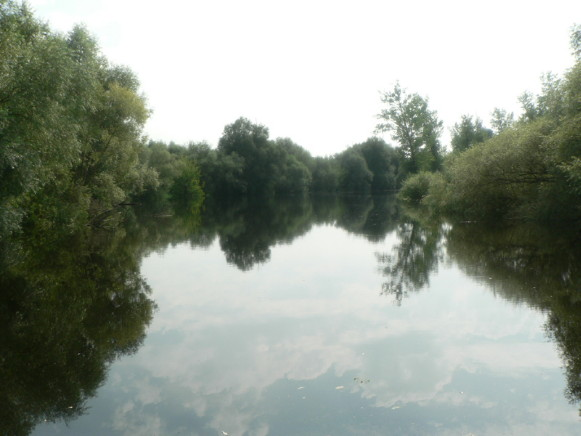 Image - The Buh River near Kryliv.