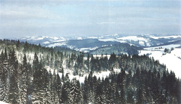 Image - Carpathian Mountain landscape on the outskirts of Verkhovyna.