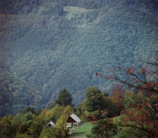 Image -- Carpathian Mountains in Bukovyna (Chernivtsi oblast).