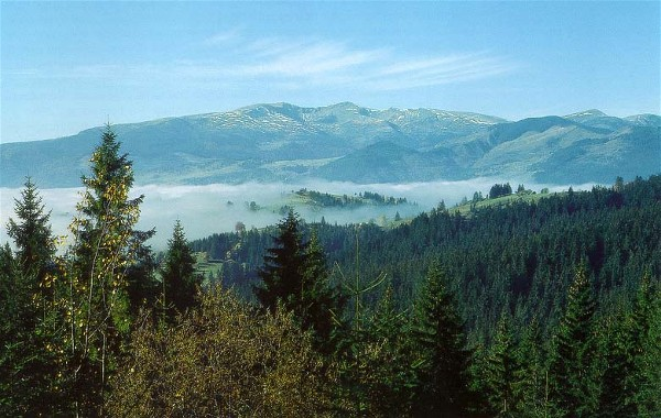 Image - Panorama of the Carpathian Mountains in Transcarpathia oblast.