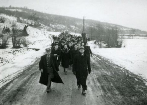 Image - The evacuation of the government of Carpatho-Ukraine following the Hungarian occupation in 1939.