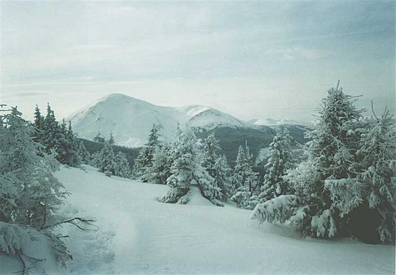 Image - Chornohora: view of Mount Petros in the winter.
