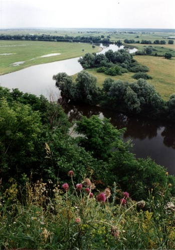 Image - The Desna River flowing through Chernihiv oblast.