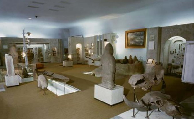 Image - The Dnipropetrovsk Historical Museum: the archaelogical exhibit.