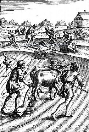 Image - Engraving: Peasants plowing with oxen.