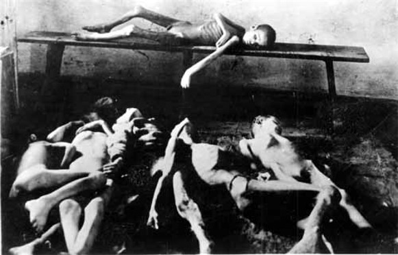 Image -- Corpses of starved children during the Famine of 1921-22.