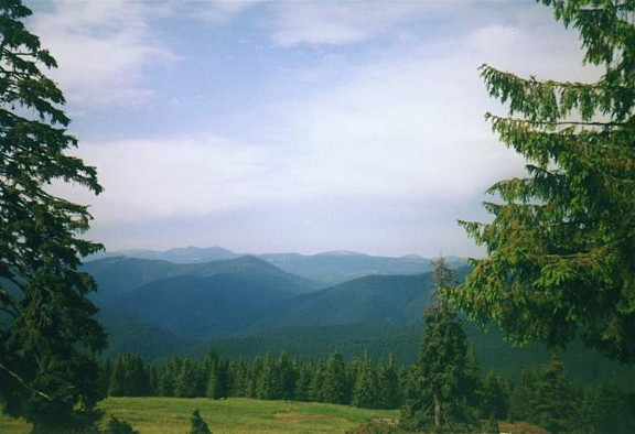 Image -- Gorgany Mountains landscape (Carpathians).
