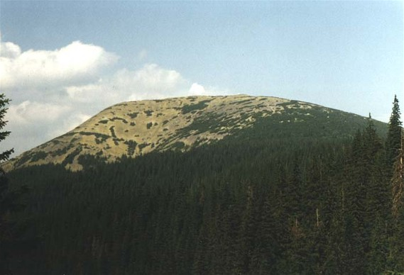 Image -- Mount Grofa in the Gorgany Mountains.