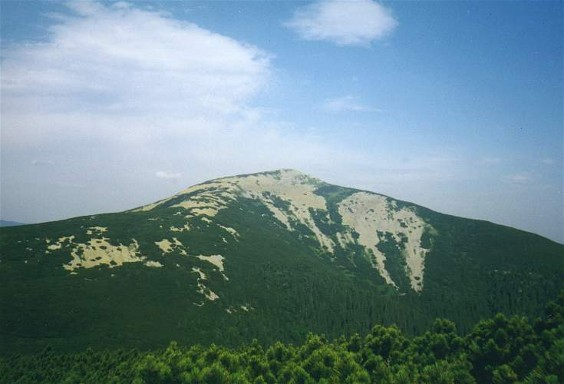 Image -- Mount Popadia in the Gorgany Mountains.