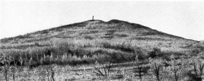 Image - A view of the Haimanova Mohyla kurhan (prior to excavations).