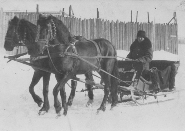 Image - A horse-drawn sledge at Christmas time