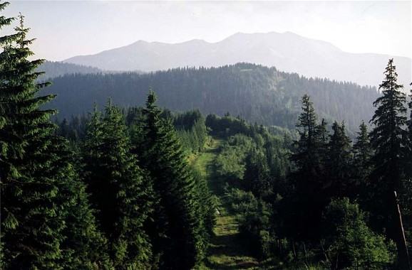 Image - Ukrainian-Rumanian border running through the Hutsul Alps near Mount Pip Ivan (Carpathians).