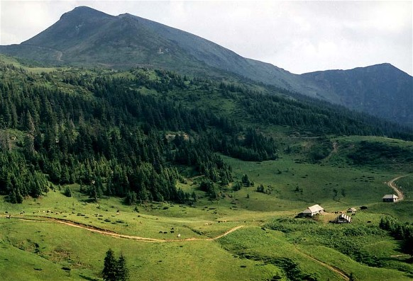 Image - Polonyna Lysycha in the Hutsul Alps (Carpathians).