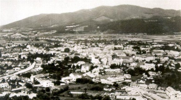 Image - A panorama of Khust (early 20th-century photo).