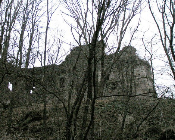 Image -- The Khust castle.