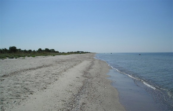 Image -- The shore of the Kinburn Spit.