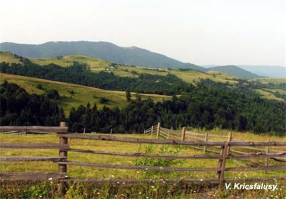 Image - A panorama of the Krasna mountain group in the Polonynian Beskyd.