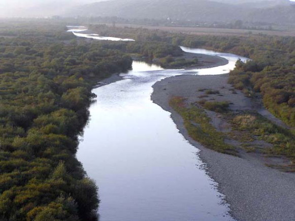 Image - The Limnytsia River flowing through the Halych National Nature Park.