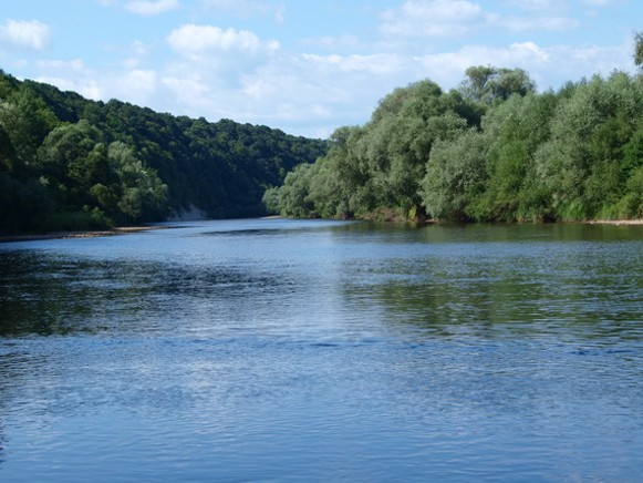 Image - The Limnytsia River