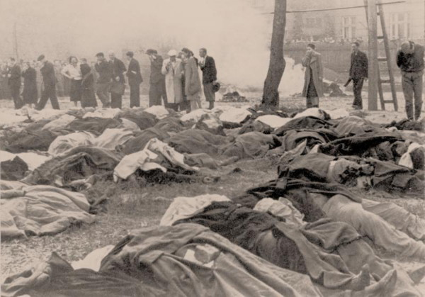 Image - Lviv: victims of NKVD killings (1 July 1941).