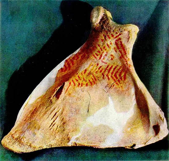 Image - Mizyn archeological site: ornamented mammoth bone (used as musical instrument).