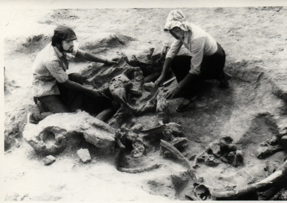 Image - Archeological excavations in Molodove I, Chernivtsi oblast.