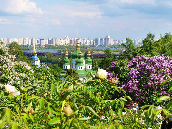 Image -- The National Botanical Garden in Kyiv (lilacs garden).