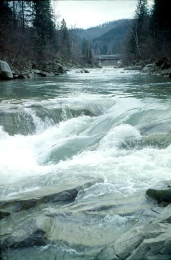 Image - Rapids on the Prut River near Yaremche.