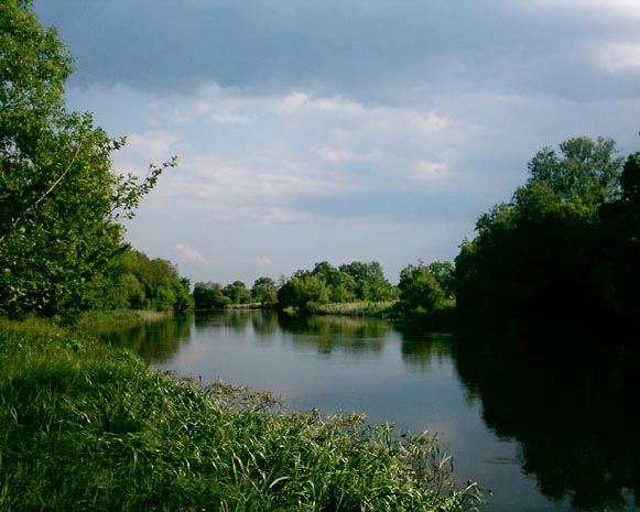 Image - The Ros River near Sukholisy.