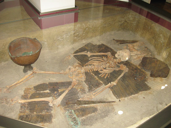 Image - A Scythian warrior skeleton in the Cherkasy Oblast Regional Studies Museum.