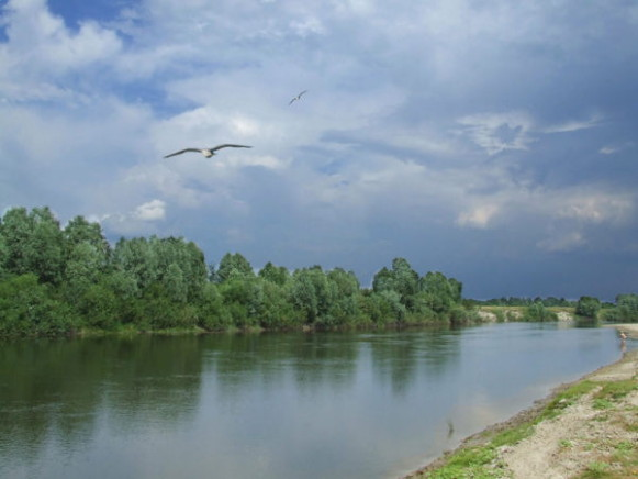 Image - The Seim River near Bakhmach.