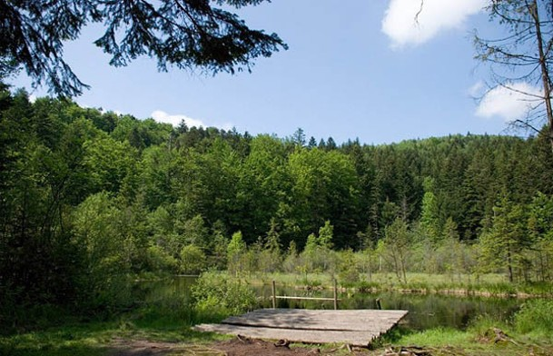 Image - Skole Beskyd National Nature Park
