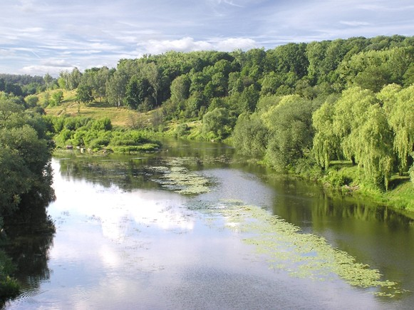 Image - The Sluch River near Novohrad-Volynskyi.