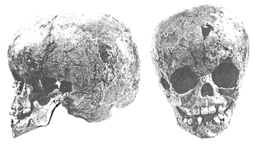 Image - Starosilia archeological site: a skull of buried Cro-Magnon child with some Neanderthal features.