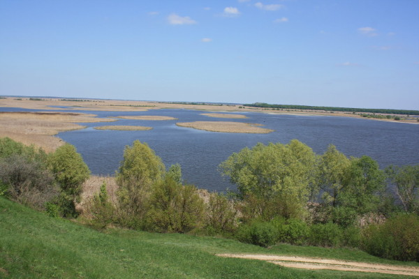 Image - The Sula River near Liashchivka.