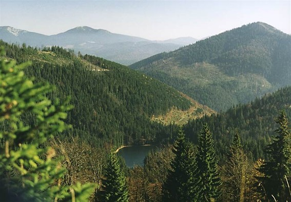 Image -- Panorama of the Synevyr Lake from Mount Ozerna in the Gorgany Mountains (Carpathians).