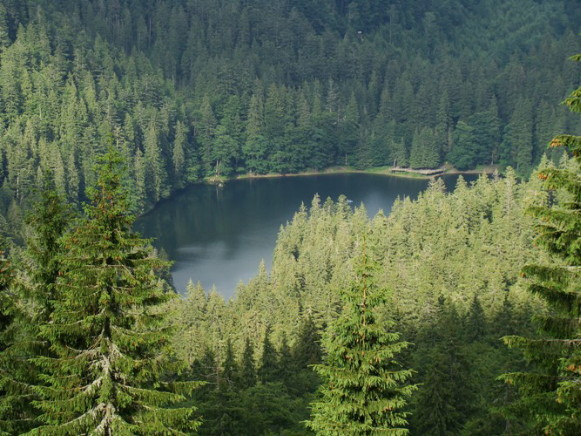 Image - Synevyr Lake in the Gorgany Mountains (Carpathians).