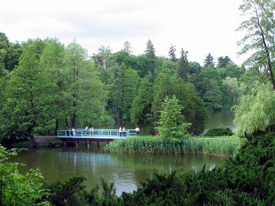 Image - A bridge on the Great Pond in the Trostianets Dendrological Park.