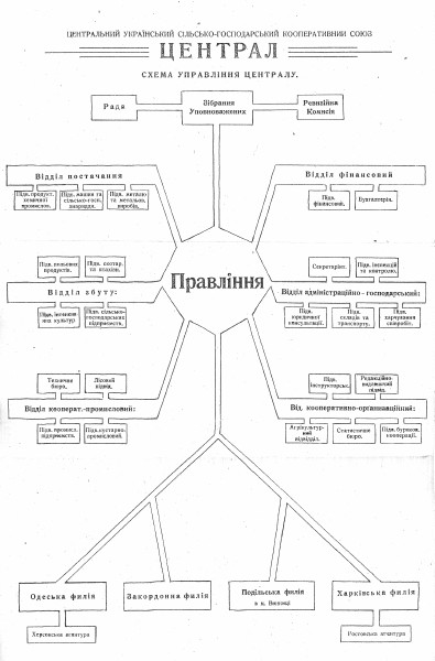 Image - The organizational structure of the Tsentral co-operative association.