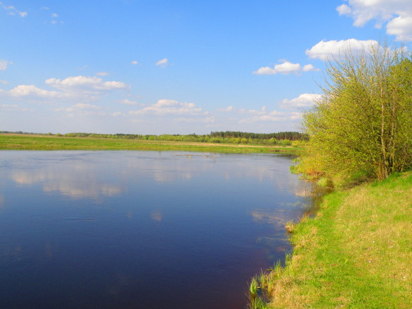 Image - A view of the Turiia River (Volhynia oblast).