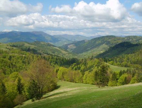 Image -- A landscape of the Velykyi Dil mountain group in the Volcanic Carpathian Mountains.