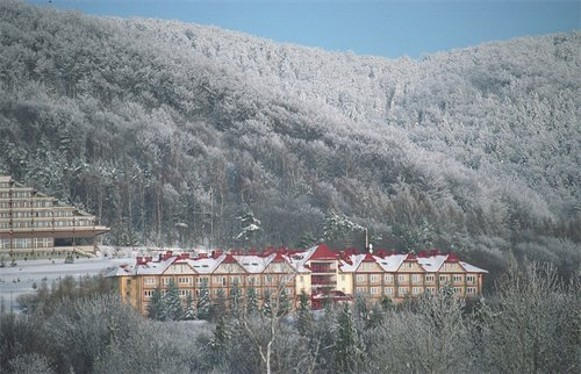 Image - Sanatoriums in Vysowa (Wysowa).