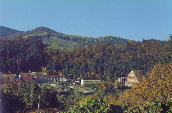Image - Panorama of Yaremche.