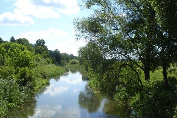 Image - The Zdvyzh River